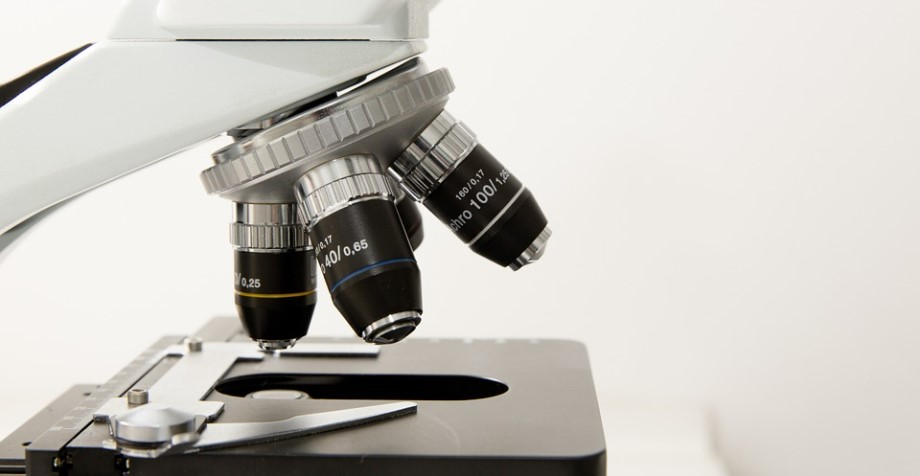 анализ крови собак для диагностики синдрома Кушинга